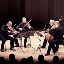 A new cycle of concerts of the Janáček Quartet is starting