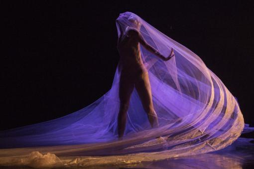 Amadeus MozArt: A work by three choreographers on one stage